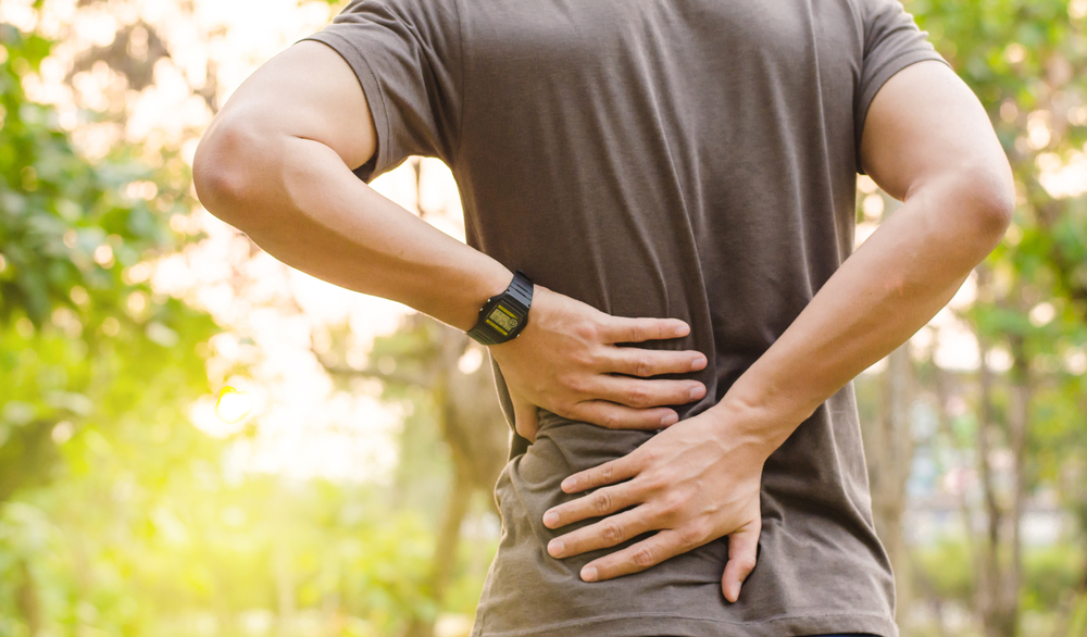 Know the Myth and Facts of Back Pain