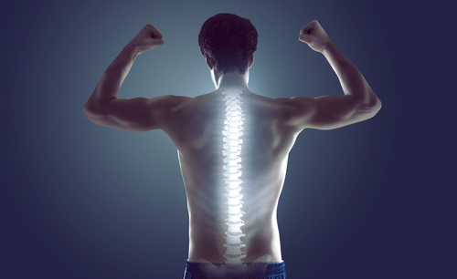 Healthy Spine for a healthy living