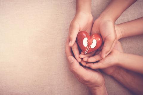 https://www.narayanahealth.org/blog/chronic-kidney-disease/