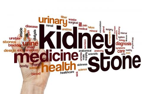 https://www.narayanahealth.org/blog/kidney-stones-are-more-common-than-you-think/