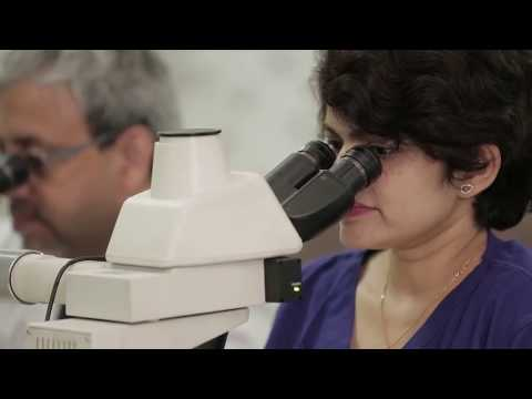 Haploidentical Stem Cell Transplantation Treatment | Dr Suparno Chakrabarti & Dr Sarita Rani Jaiswal